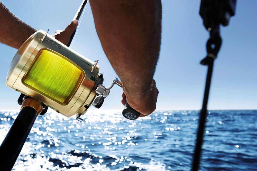 спортивный рыболовный сезон